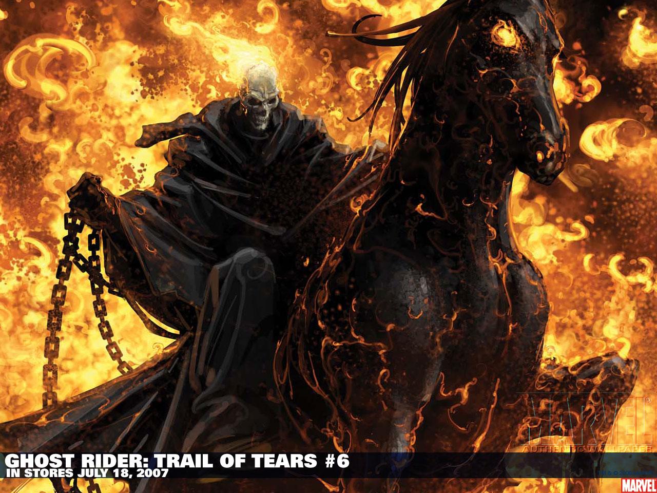 Good Wallpaper Horse Ghost Rider - comicswallpapers026  2018_754815.jpg