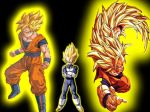 team-of-saiyans-dragon-ball-z-26866817-1024-768